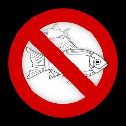 fish-995050_960_720