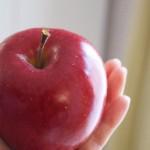 りんご病での大人の症状とは?どのくらい続くの?